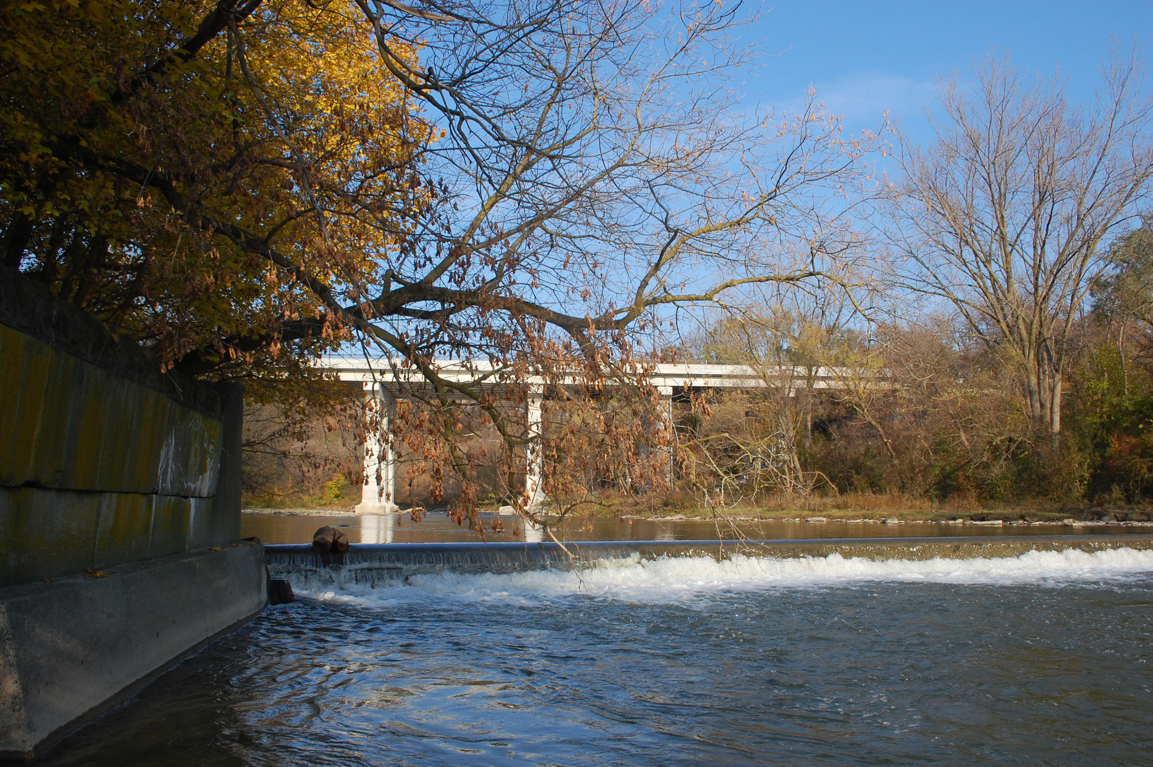 Humber River And Dundas St Bridge At Home Smith Park Etobicoke